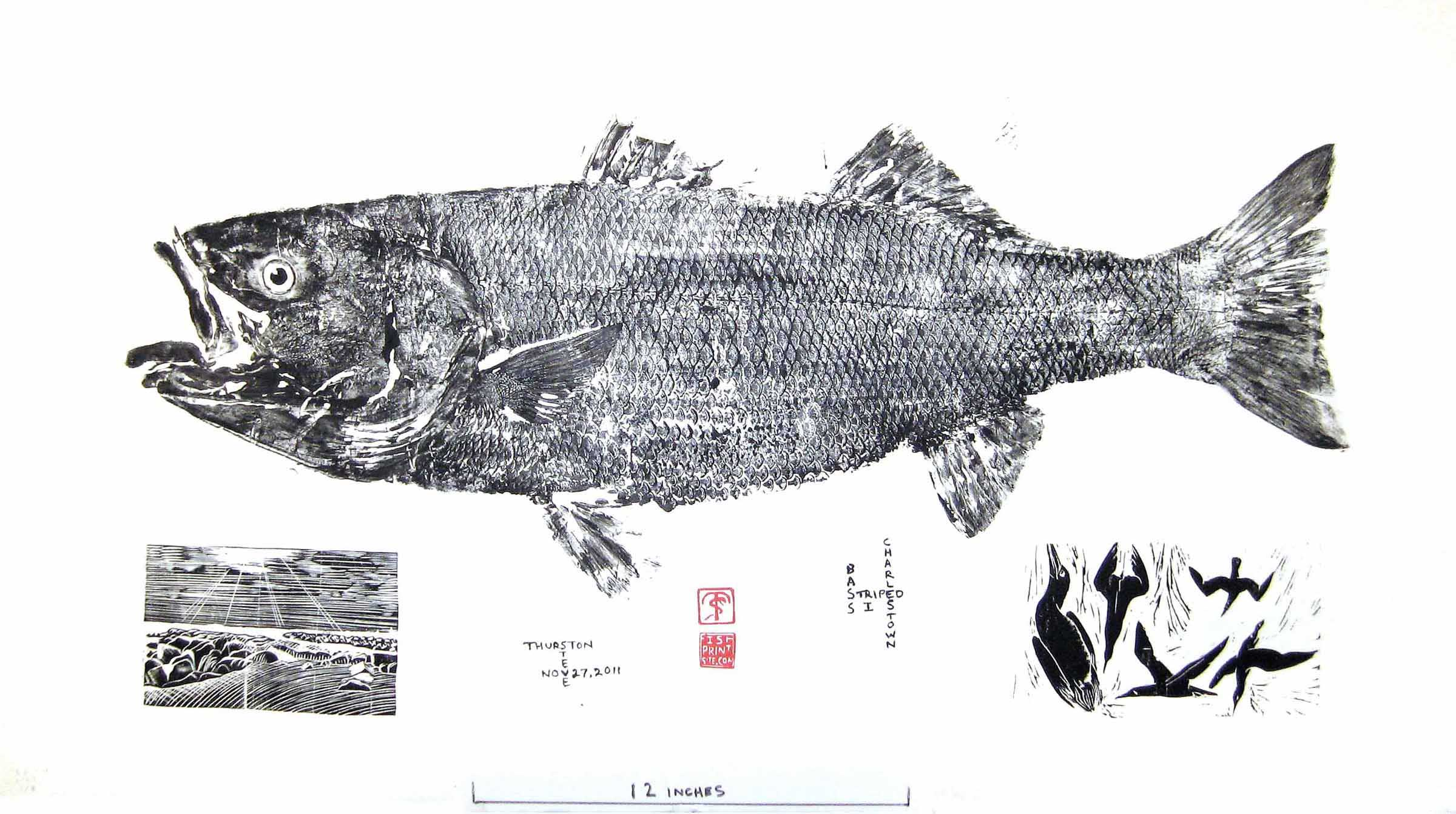 The prints for Fish pictures to print